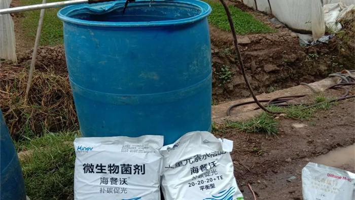 水溶肥怎样使用效果更好