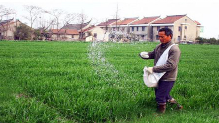 春耕用肥作用