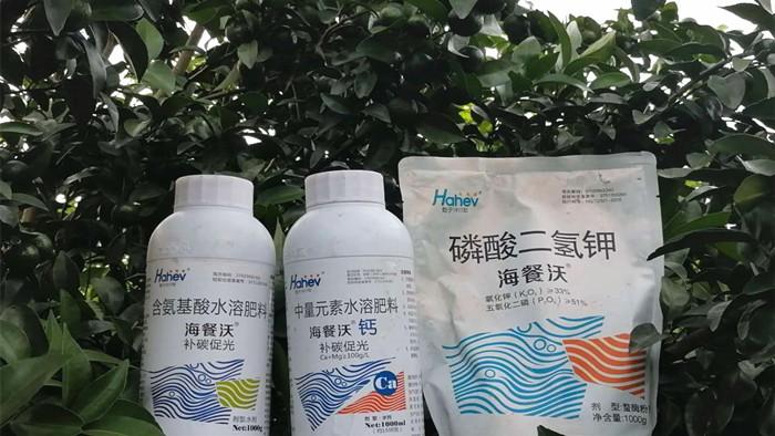 磷酸二氢钾哪个品牌好?柑橘基地邓老板的案例来啦